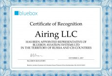 Airing LLC Certificate of Recognition BB